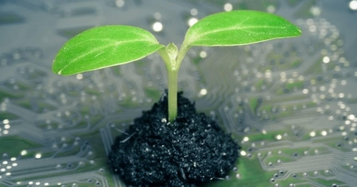 Energieeffizientere-Digitalisierung