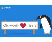 Microsoft_Bild.jpg