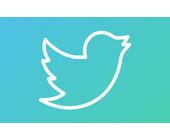 Twitter_Logo_Verlauf_Teaser.jpg