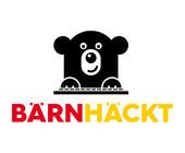 BernHackt_Hackathon_Teaser.jpg