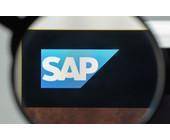 SAP unter der Lupe